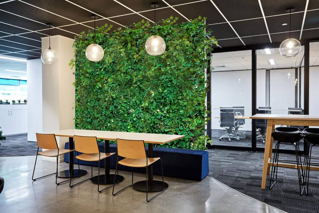 How to Use Plants in the Office to Increase Productivity